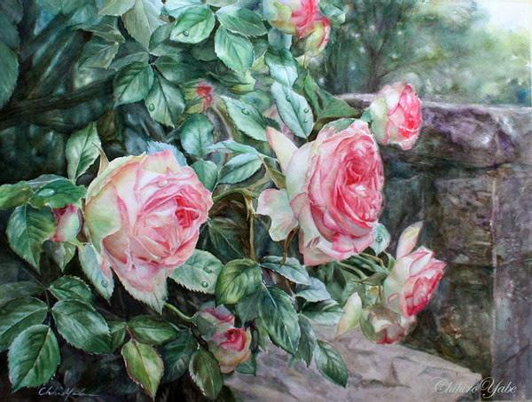 Le doux parfum des roses Chihir14