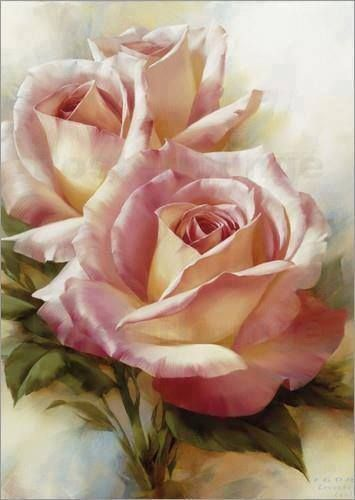 Le doux parfum des roses Igor_l10
