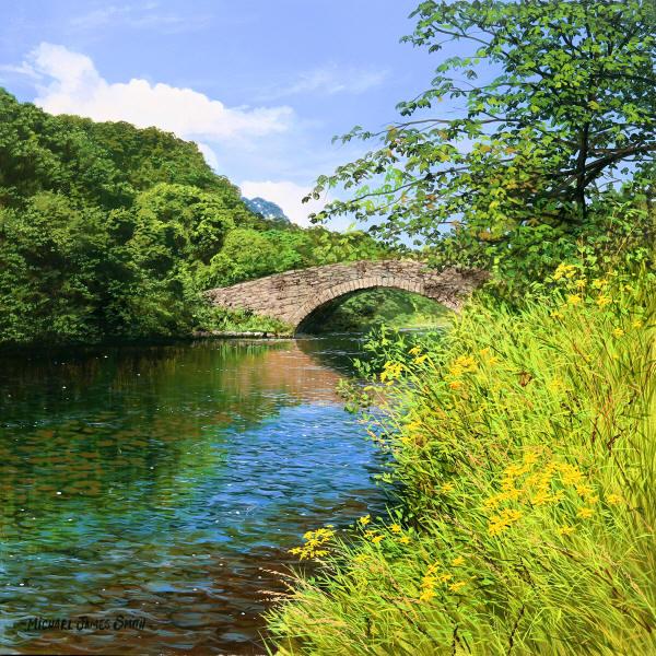 L'eau paisible des ruisseaux et petites rivières  - Page 2 Wildda10
