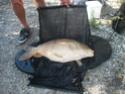 Vos clichés de pêche 1-9-2013