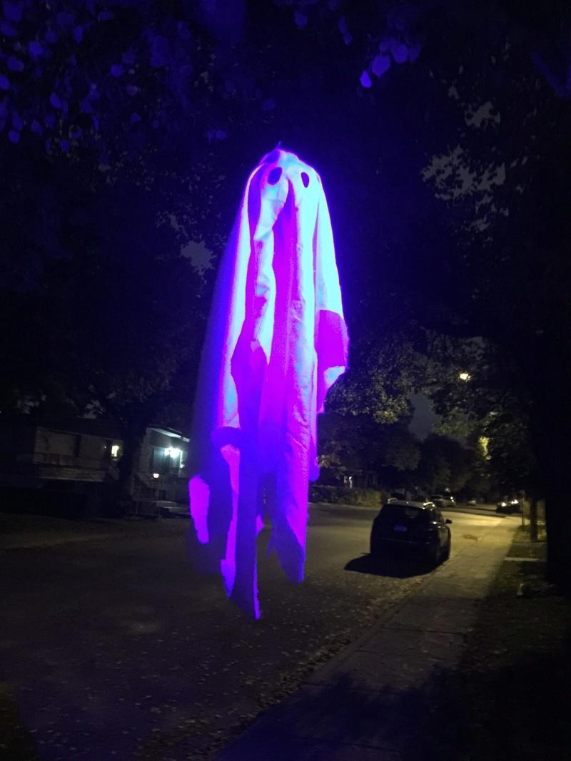 Joyeuse Halloween! Image15