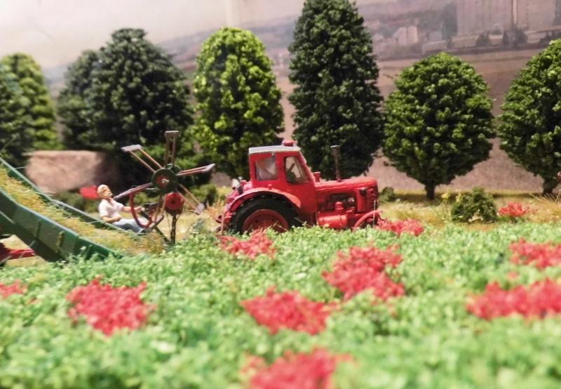 kleines landschaftliches Fotodiorama - Seite 2 Dsci1525