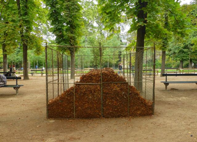 Choses vues dans le jardin du Luxembourg, à Paris - Page 4 Tour_e10