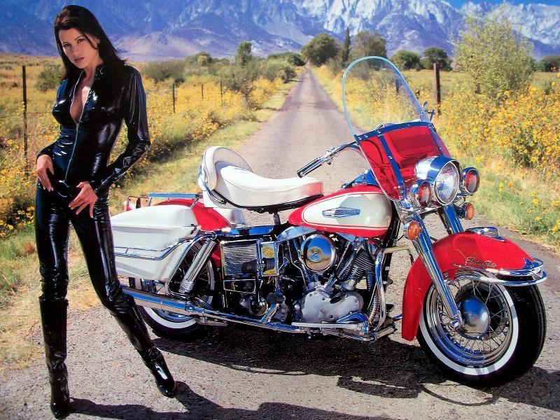 Basé sur l'ordre alphabétique, des noms de voitures, camions, dragsters, vélos, motos, tracteurs, bref tout ce qui roule !... - Page 35 Harley10