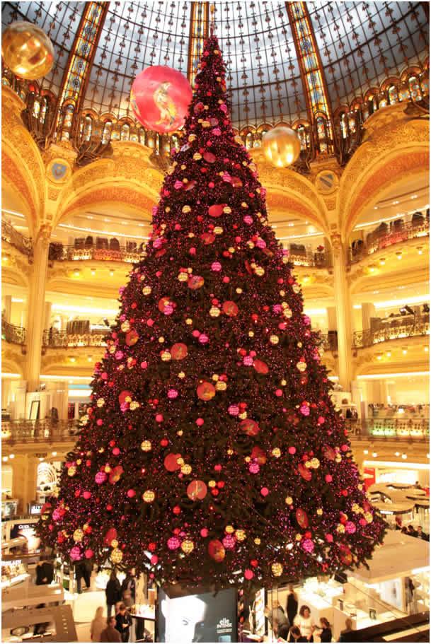 Les illuminations de Noël pour les fêtes 2.015   2.016 ! - Page 11 Sapin-10