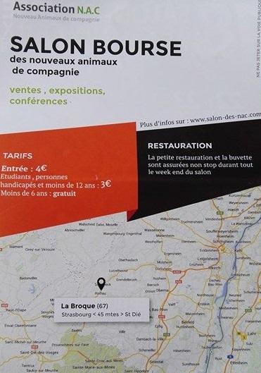 Bourse La Broque- 22-23 Octobre : Nvx animaux de compagnie 14171810