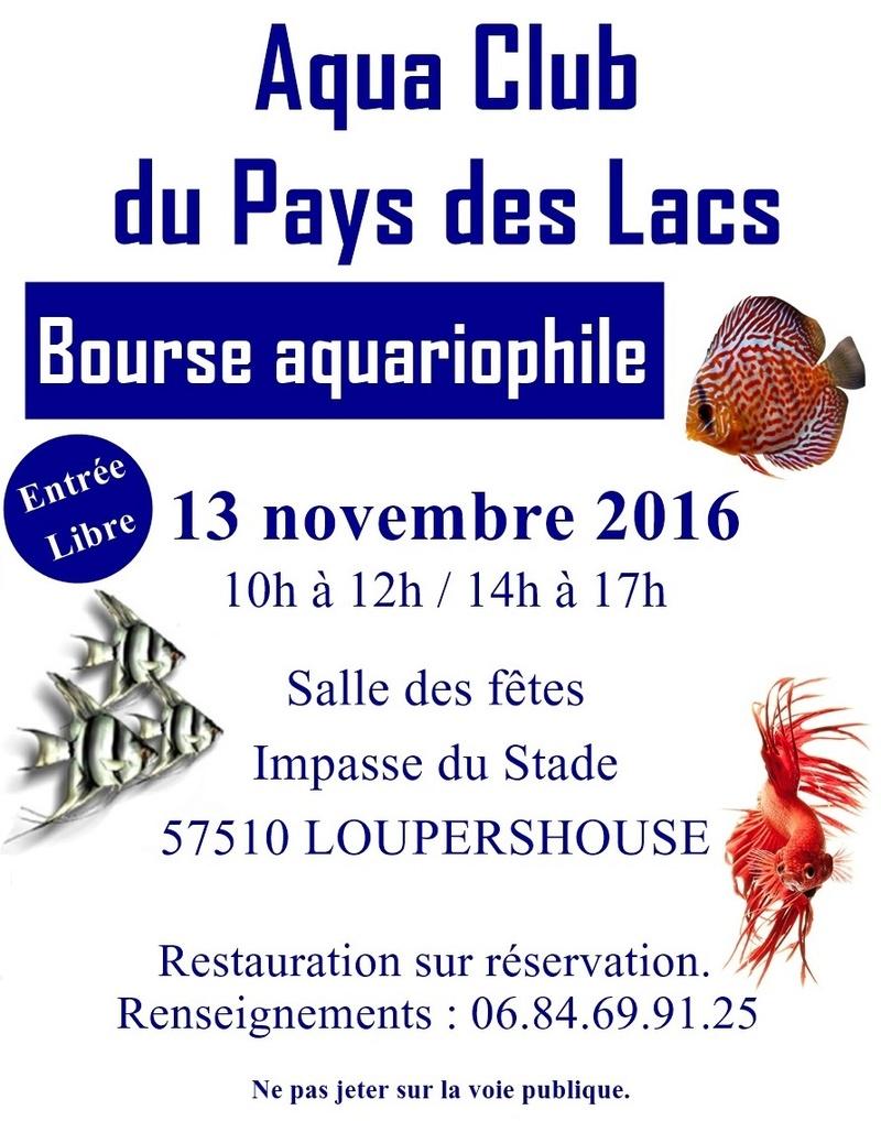 Bourse à Loupershouse (57) - 13 novembre 2016  Affich11