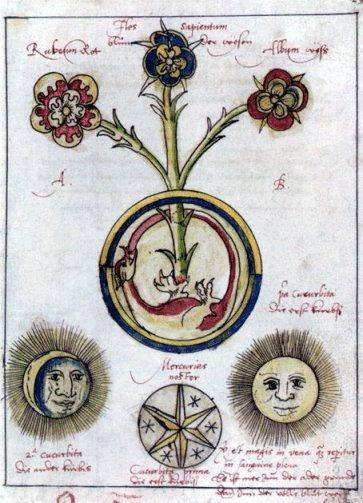 Ouroboros, cycle éternel de la nature. - Page 4 Alchym10