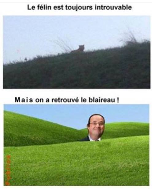 humour - Page 5 Image139