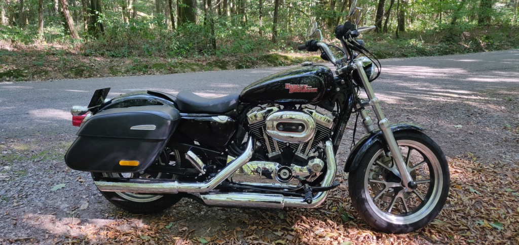 vend sportster xl 1200t superlow Img_2038