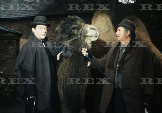 GALERIE PHOTOS JEREMY BRETT - Page 2 Oezswh10