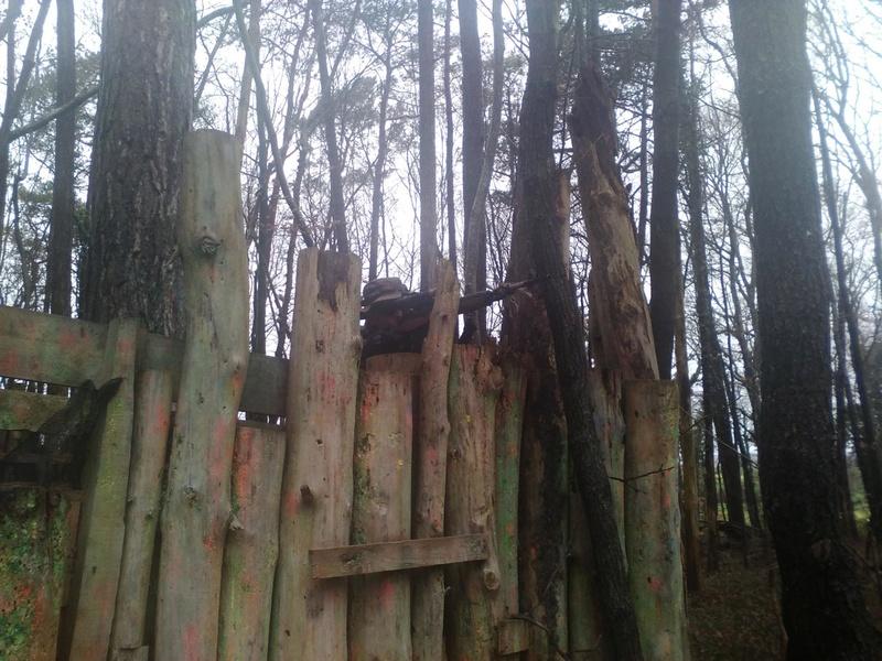 Partie 31 janvier 2016 ( Paintball / Forêt ) 12593410