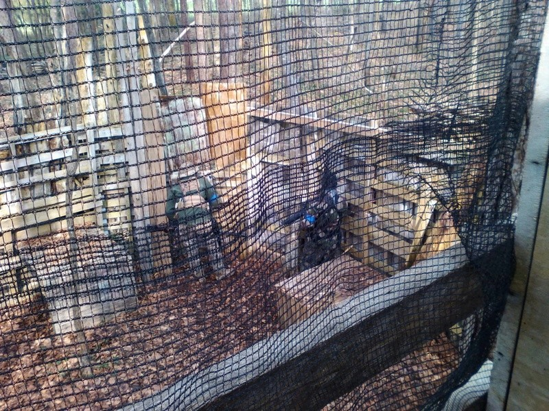 Partie 28 févier 2016 ( Paintball ) 12764813