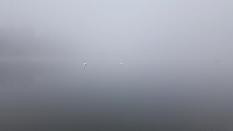 Epreuve KAYAK : Dispo bateau 20161019