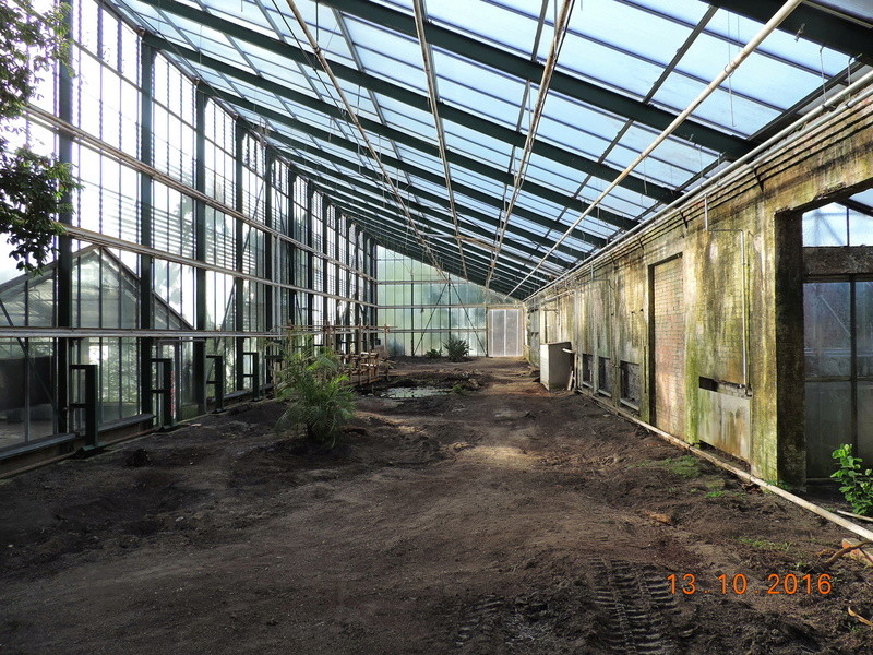 Cacti and Sukkulent in Köln, every day new flowers in the greenhouse Part 152 Bild_333
