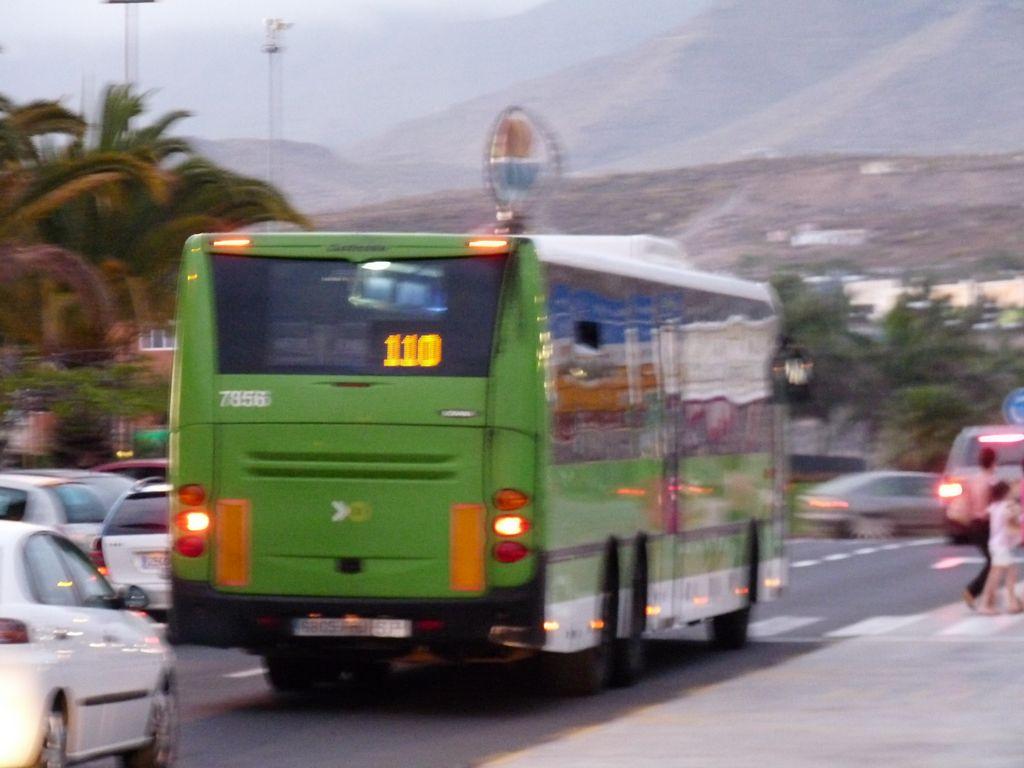 TITSA  TENERIFE P1280113