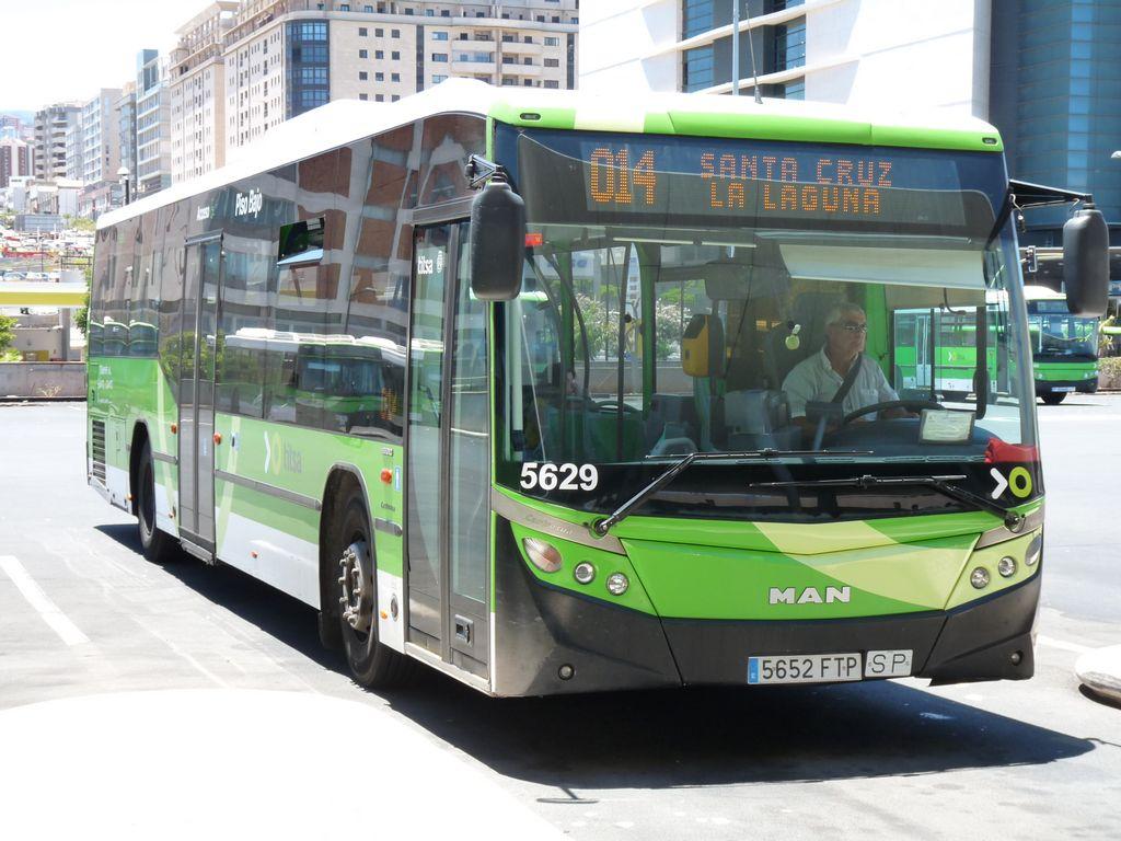 TITSA  TENERIFE P1290049