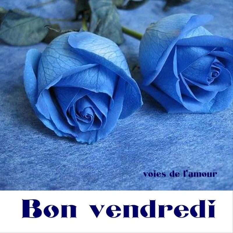Bon Vendredi Rose_b10