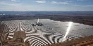 COP22, quelques questions environnementales... et Jorf Noor10