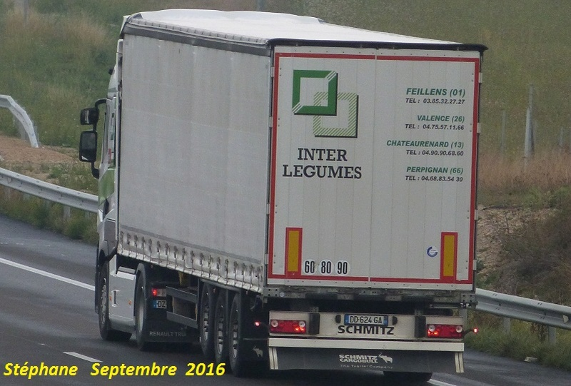 Inter Legumes (Feillens) (01) - Page 2 P1350028
