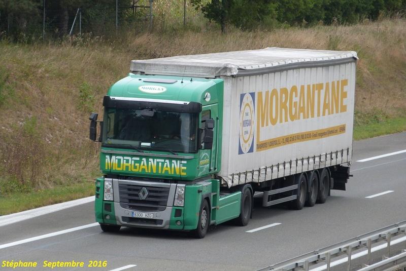 Morgantane - Vilamartin De Valdeorras - Page 2 P1350115