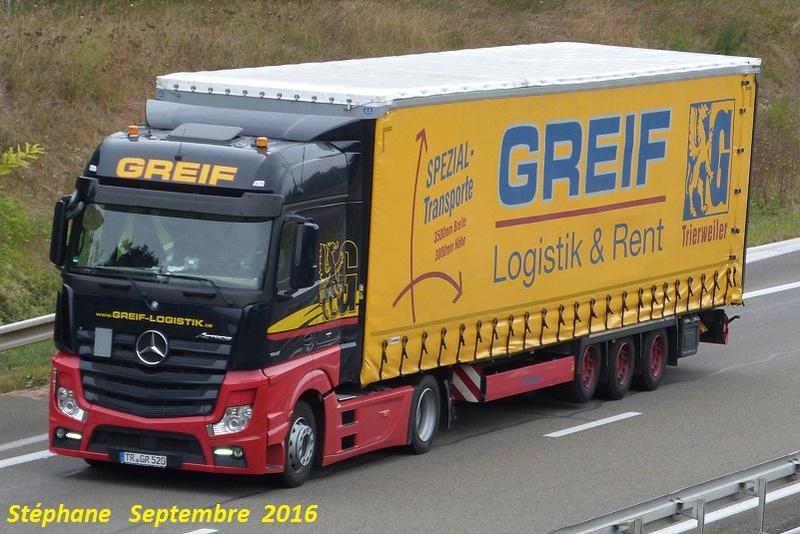 Greif  (Trierweiler) P1350124