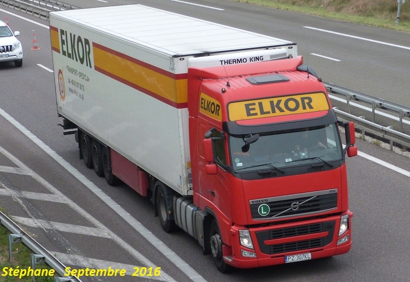 Elkor (Kleszczewo) P1350160