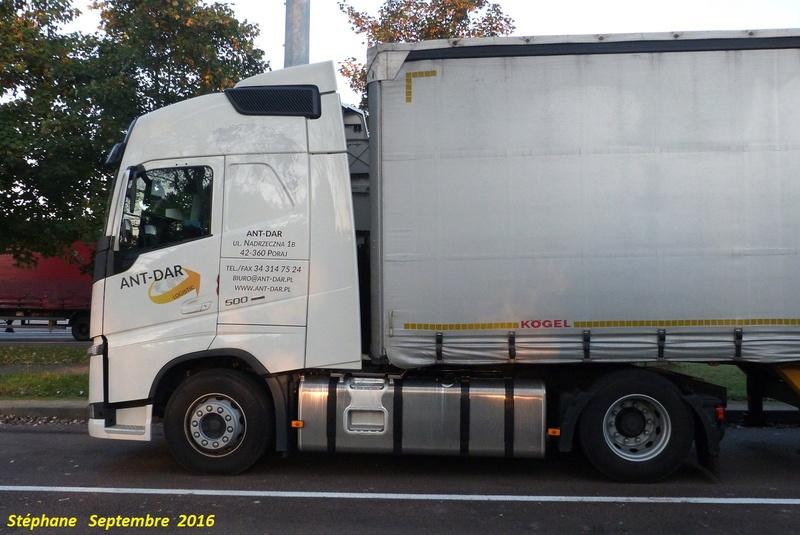 Ant Dar Logistic (Poraj) P1350174