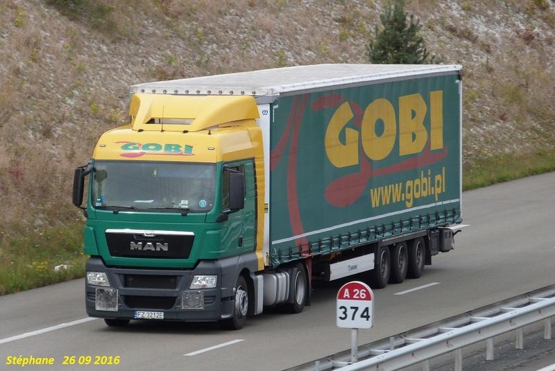 Gobi (Zielona Gora) P1350215