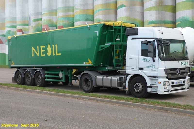 Neoil (Reignac sur Indre) (37) P1350348