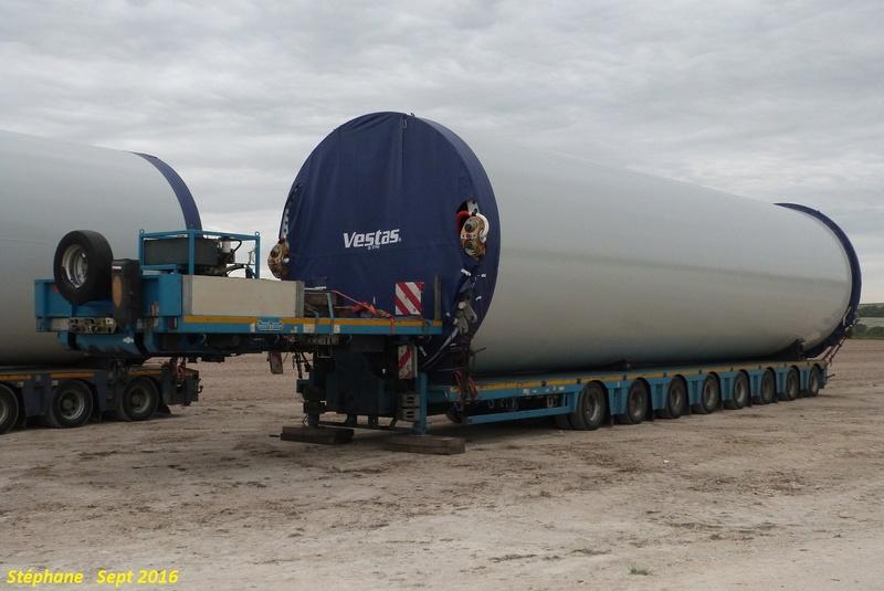 Nooteboom (Vijchen) (NL) P1350358