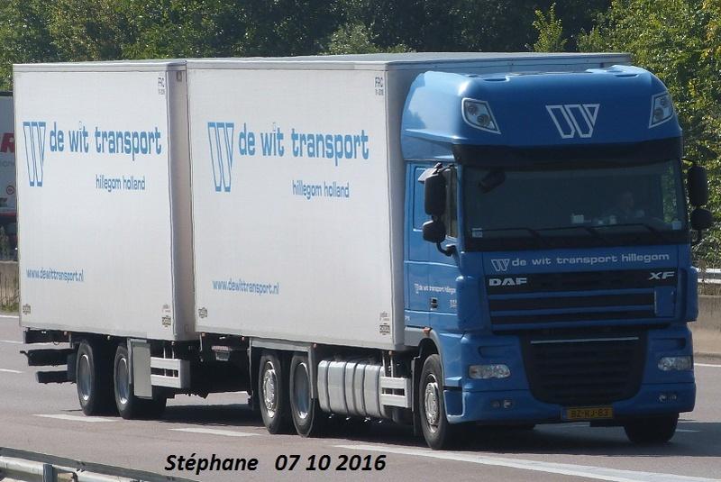 De Wit Transport (Hillegom) - Page 2 P1350839