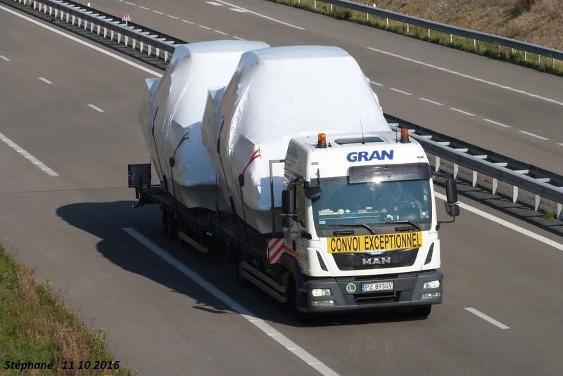Gran  (Slupsk) P1350857