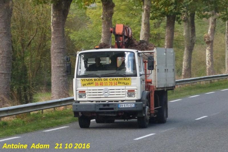 Renault  série G, M, S, JL, JK (moyens tonnages) - Page 10 P1360217