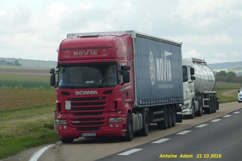 Novia  (Lask) P1360311