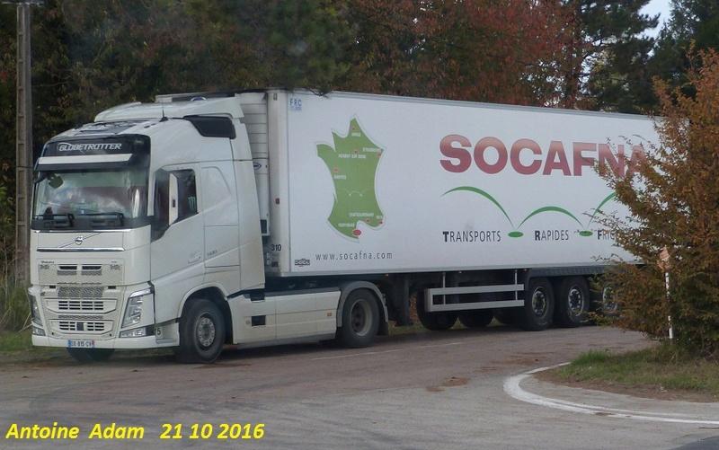 Socafna (Perpignan, 66) - Page 2 P1360318