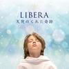 La discographie Libera Angel10