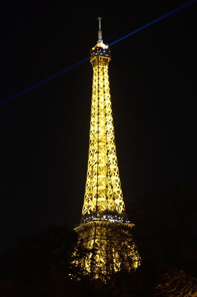 Tour Eiffel...(fil ouvert à tous) - Page 2 Dsc01213