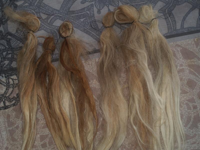 Mes teintures naturelles et wig - tuto Phytolacca americana Wig_yt16