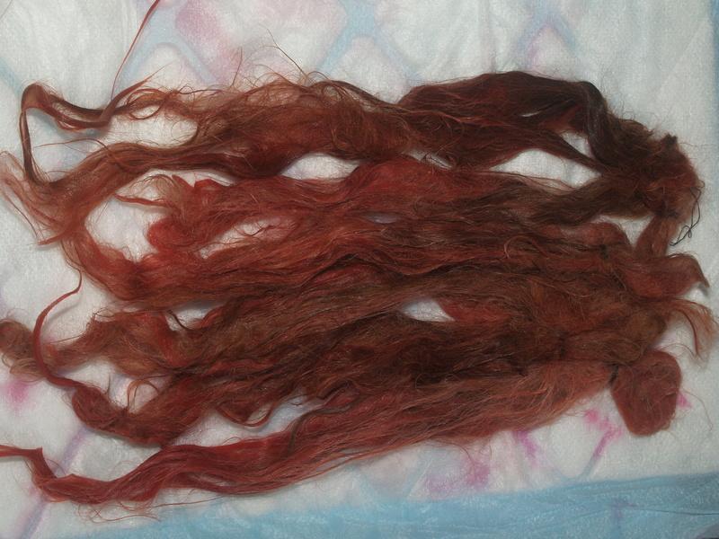 Mes teintures naturelles et wig - tuto Phytolacca americana Wig_yt23