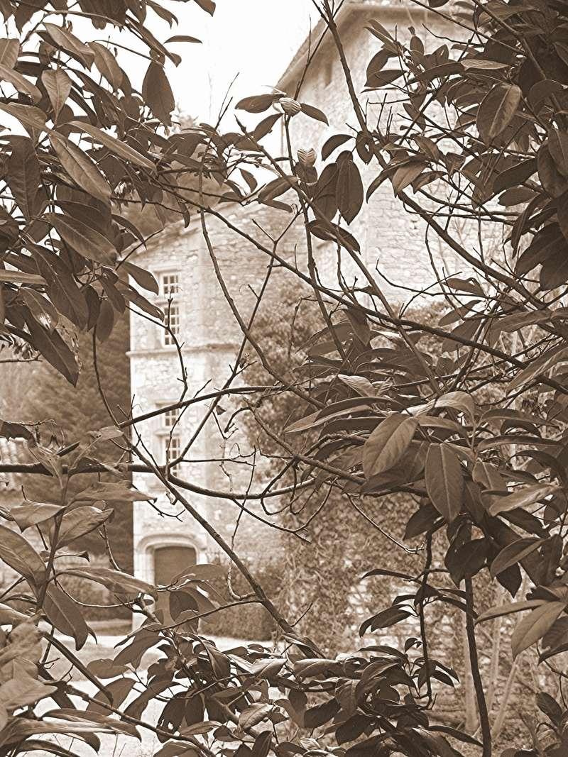 Montbellet Patrimoine  Bien vivre à Thurissey   Le Moyen Âge encore présent  Journée du Patrimoine de Pays et des Moulins  Dimanche 21 juin 2015 Chytea12