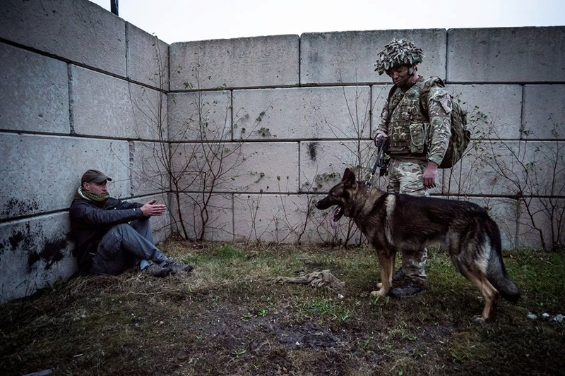 Animaux soldats - Page 6 61h84