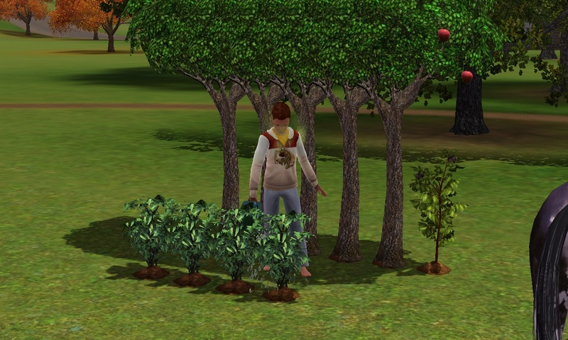 "[Challenge] Teens and Horses ""Sims 3"" Screen25"
