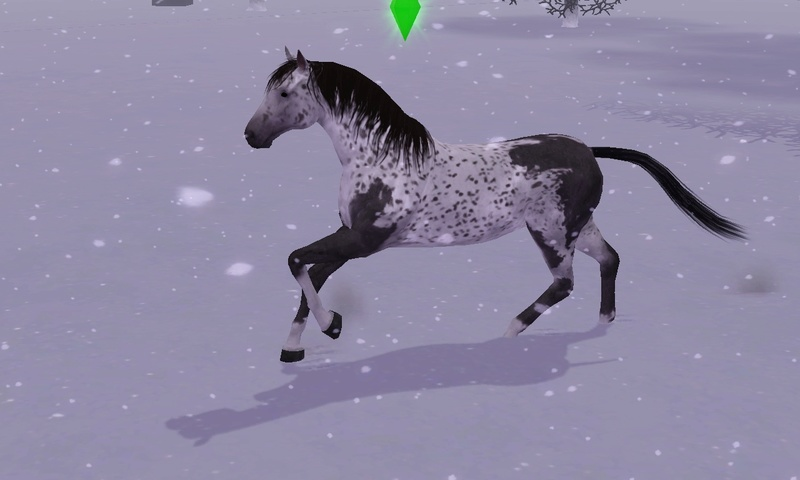 "[Challenge] Teens and Horses ""Sims 3"" Screen48"