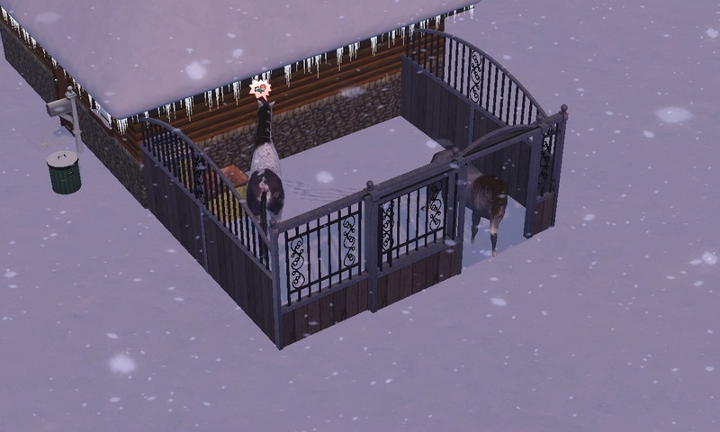 "[Challenge] Teens and Horses ""Sims 3"" Screen61"