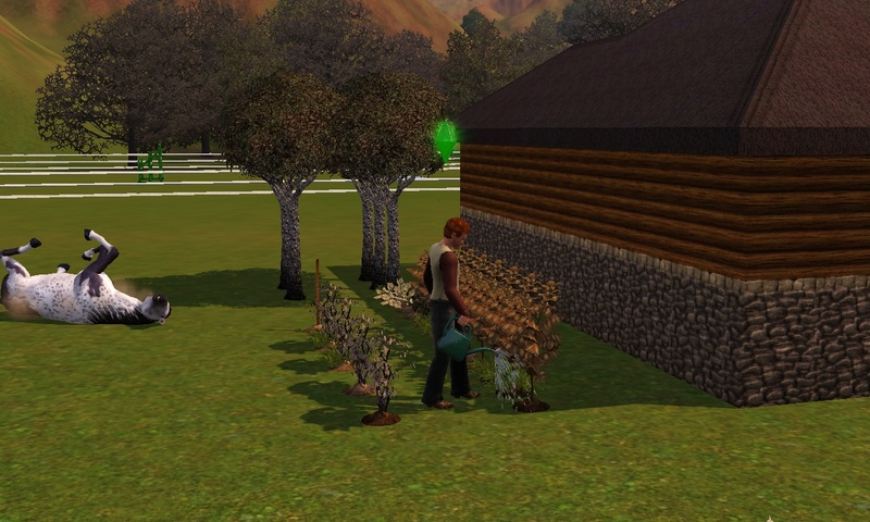 "[Challenge] Teens and Horses ""Sims 3"" Screen67"