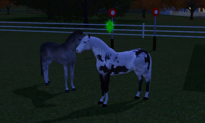 "[Challenge] Teens and Horses ""Sims 3"" Screen93"