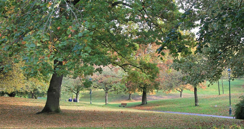 Pittencrieff Park, Dunfermline. Img_2225