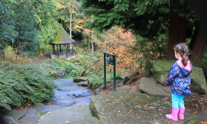 Pittencrieff Park, Dunfermline. Img_2227