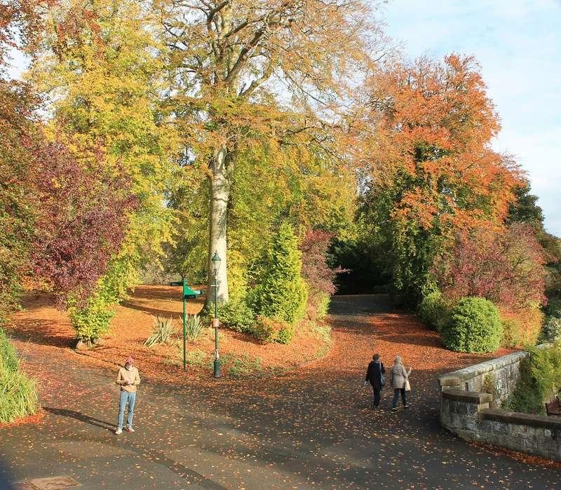 Pittencrieff Park, Dunfermline. Img_2232